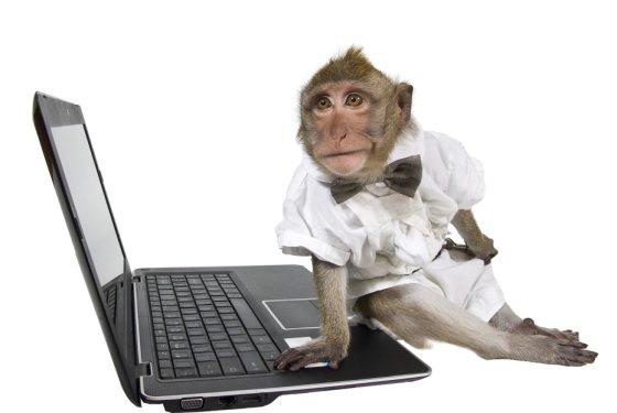 Monkey_Shutterstock